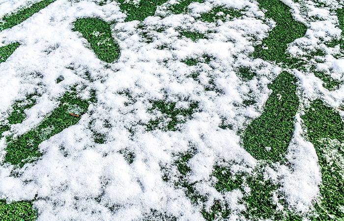 Césped artificial otoño con nieve