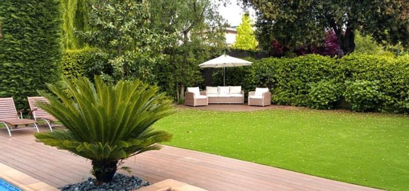 Los árboles y el césped artificial ¿son compatibles en tu jardín?