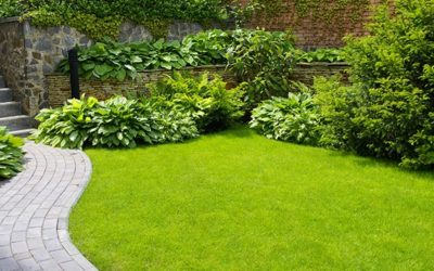 Is it possible to plant trees and natural plants with in artificial grass?