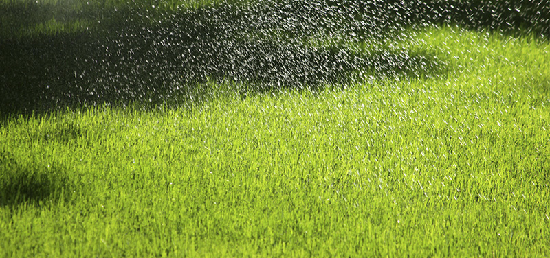 Artificial grass with rain. How to drain?
