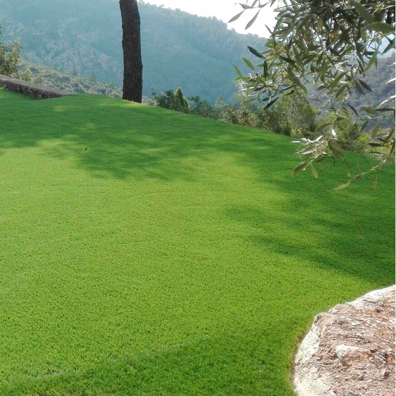 C sped artificial en castell n real turf - Cesped artificial castellon ...