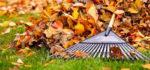 Cuidados del césped artificial en otoño