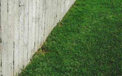Determining aspects in the price of artificial turf